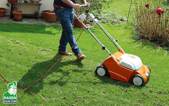Rasen Vertikutieren Wann Wie Und Warum Vertikutieren Rasenpflege
