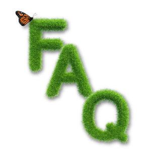 Rasenwissen Kategorie FAQ