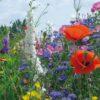 Rasendoktor Blumenmischung Landgarten